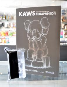 kaws-passing-through-18.jpg