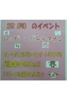 いんてぃんち-DCF00010.jpg