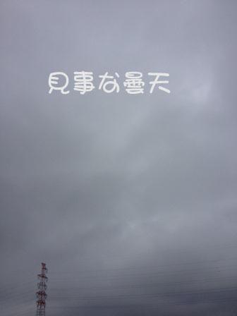 1305051.jpg