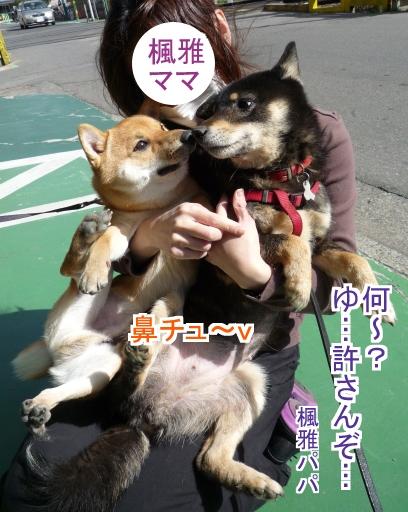 コタロウ&楓雅