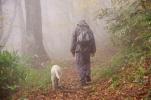 犬と人間の犬