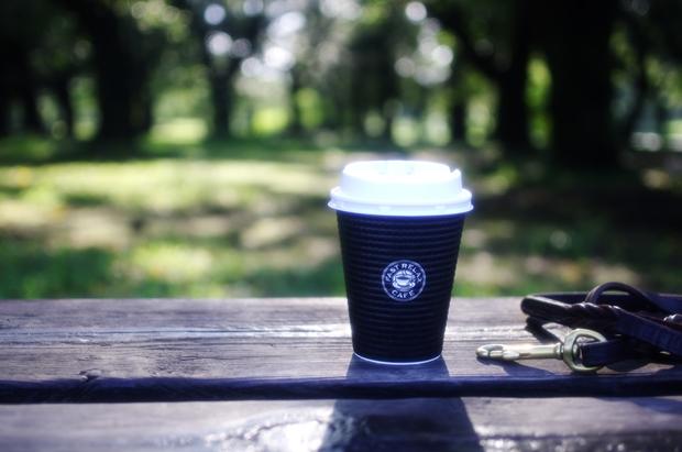 涼しい朝、ベンチでホットコーヒー