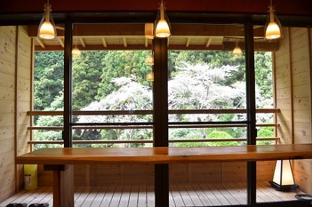 山の間からの眺め(桜)
