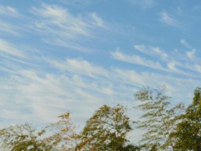 飛び立つ雲