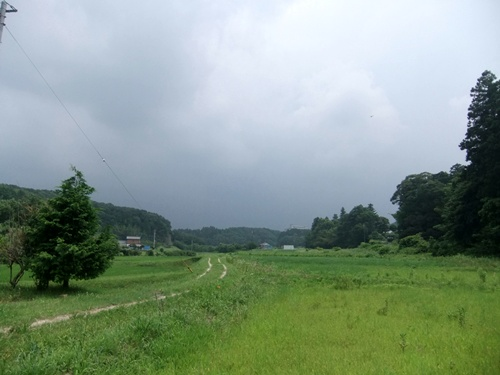 2013.6.24 ジャガイモ収穫(伊藤農園) 007