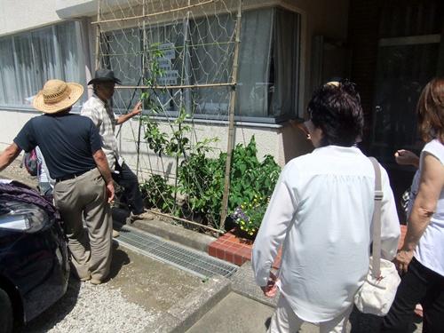 2013.7.8 パッションフルーツ栽培講習(やまびこ) 047 (1)