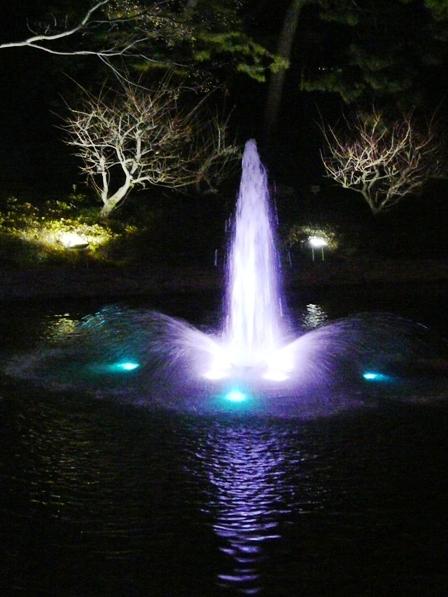 お堀の噴水のライトアップ 11