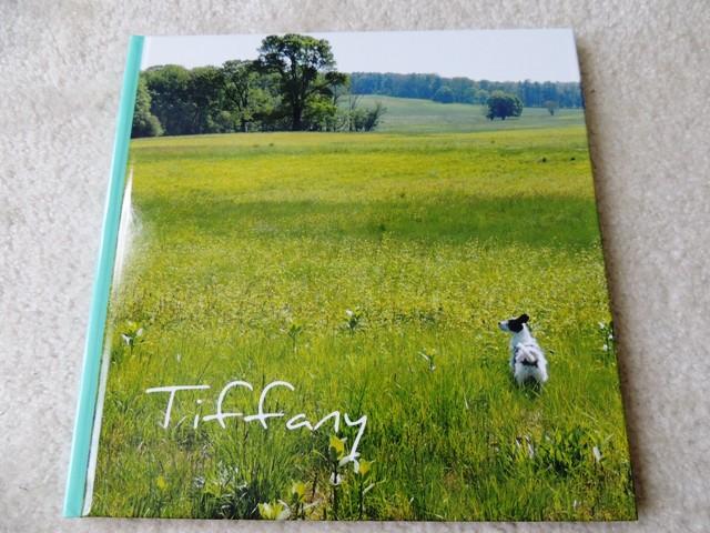 Photo Book (2)
