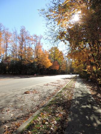 晩秋の小路