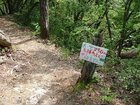 武衛山城登山道の標識