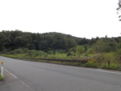 烏ヶ岳城を臨む(北西から)