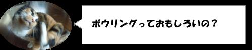 サザンオールスターズの桑田佳祐はボウリングが超うまい