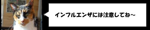 日本一長い恵方巻!その長さは?