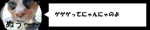 2月8日は松下奈緒の誕生日!