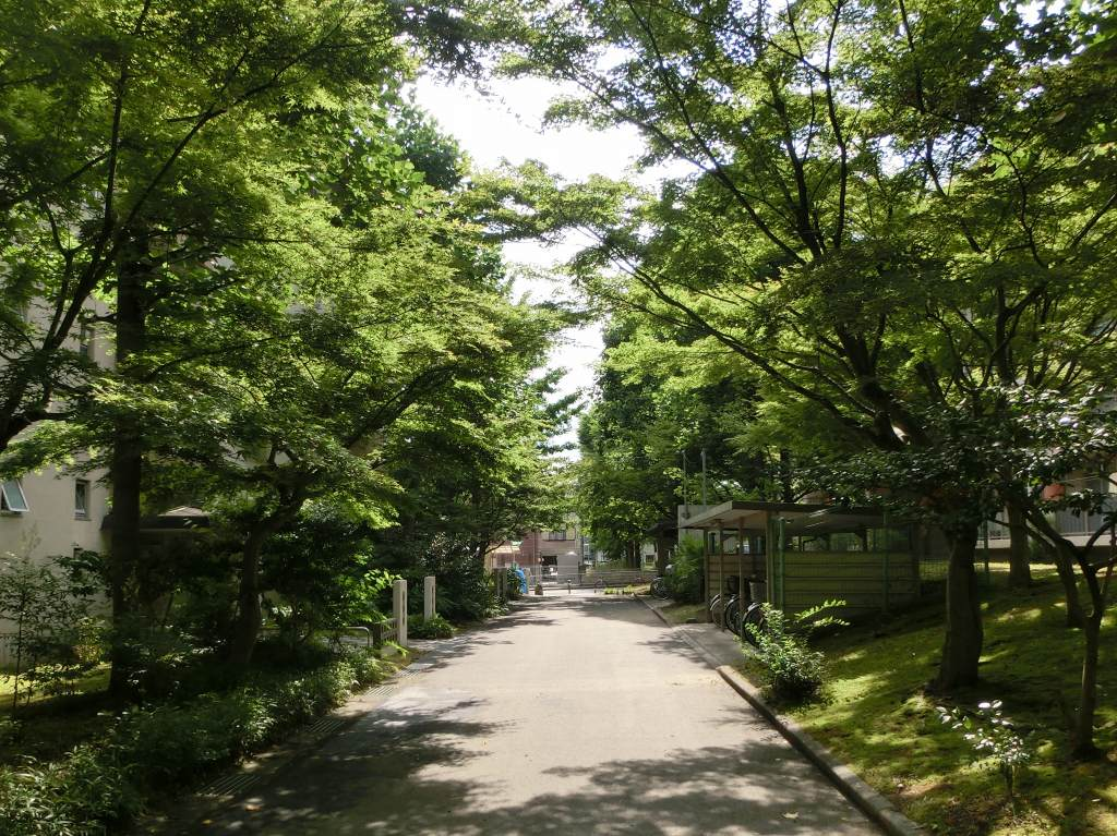 鴨川花園アジサイ 148