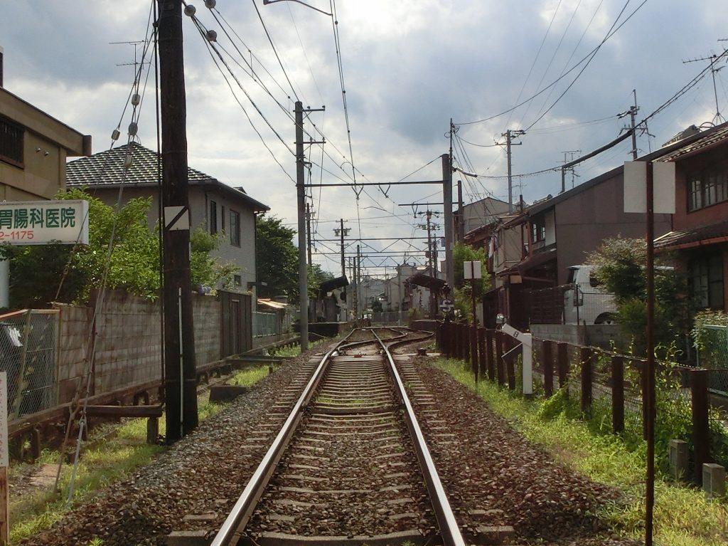鴨川花園アジサイ 204