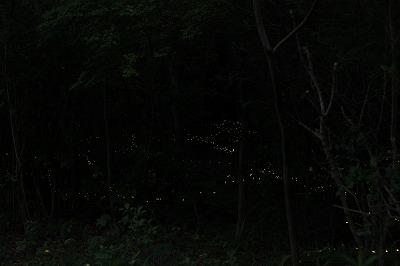 2013 6 3 (6)