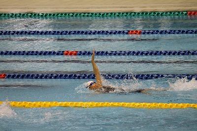 水泳Japancup 2013 (16)