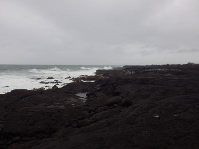 アイスランド5日目 (22)