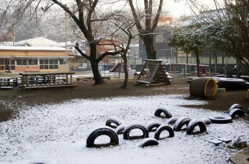 2007-08-23 平成25年度1月22日園庭雪 006 (800x527)