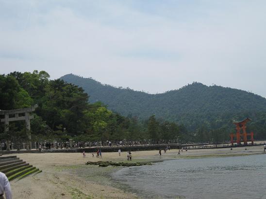 2013広島旅行:宮島 大鳥居