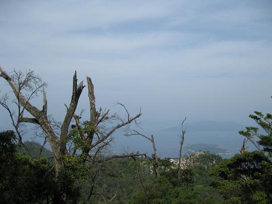 2013広島旅行:宮島 弥山⑦