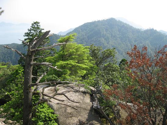 2013広島旅行:宮島 弥山頂上②