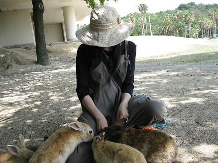 2013広島旅行 うさぎ島 うさぎ⑦