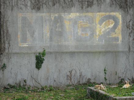 2013広島旅行 うさぎ島 発電場跡③