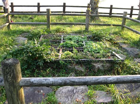 鳥取旅行:鳥取城跡 車井戸2