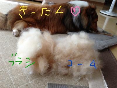 fc2blog_20130629113907aeb.jpg