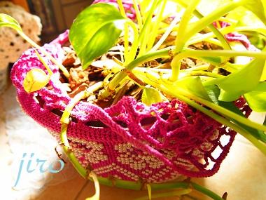 ポットドレス(鉢カバー)- a foliage plant net (6)