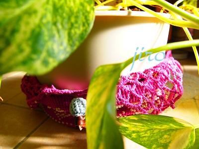 ポットドレス(鉢カバー)- a foliage plant net (8)