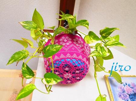 ポットドレス(鉢カバー)- a foliage plant net (4)