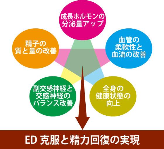 ED改善の5つの条件