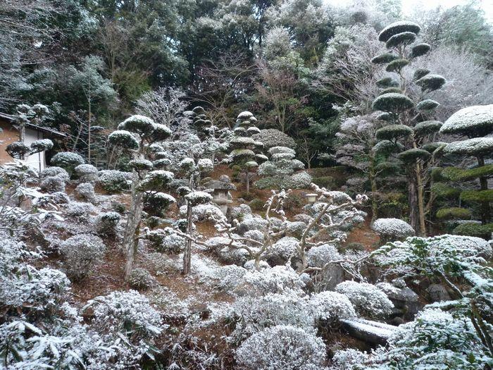 20141215雪景色1