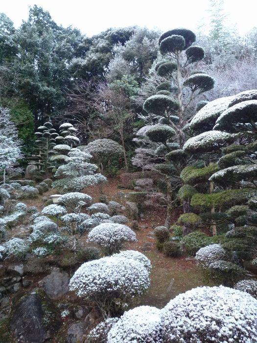 20141215雪景色2