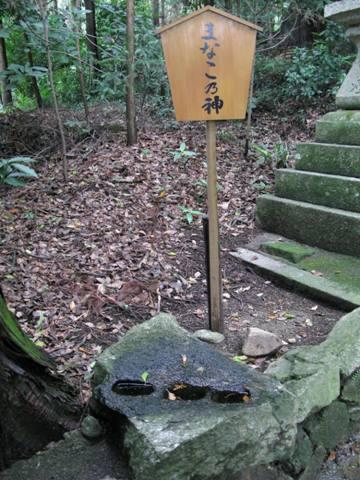 神山神社 007