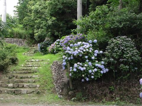 神山神社 014