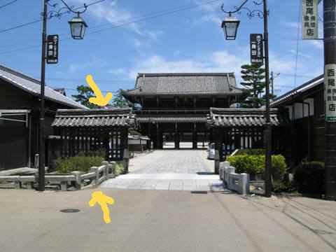 高田本山 074
