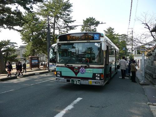 P1140527.jpg