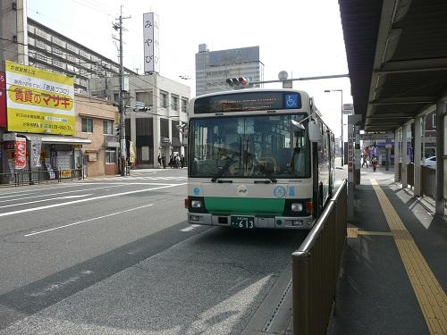 P1140538.jpg