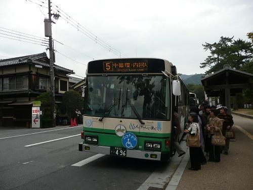 P1140583.jpg