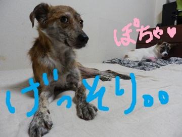 帰宅の男 (3)