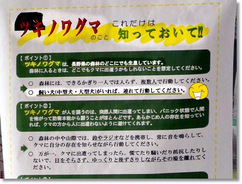 DSC_6076 - コピー