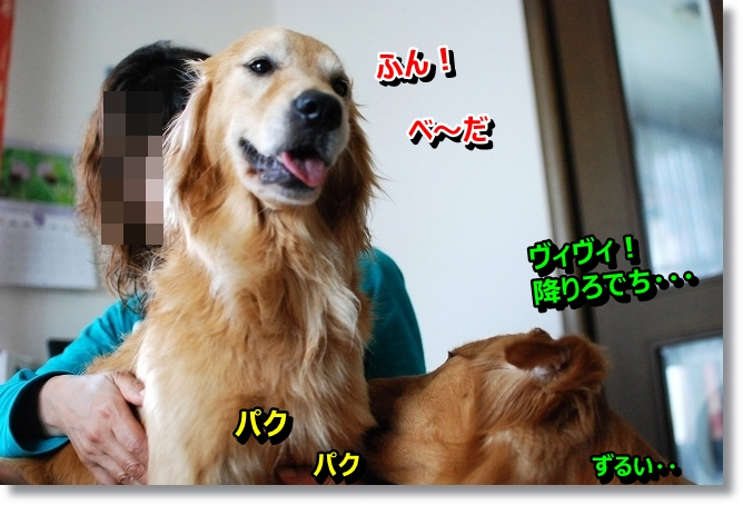 DSC_0013_20130609013551.jpg