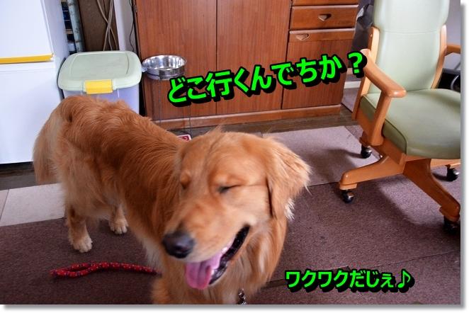 DSC_3675.jpg