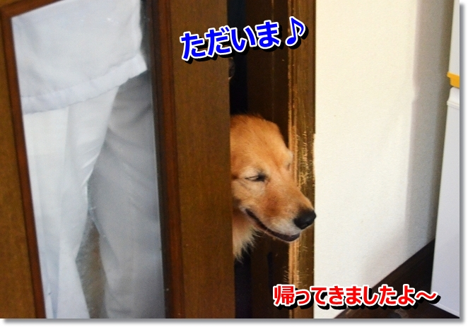 DSC_3984.jpg