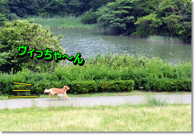 DSC_3997.jpg