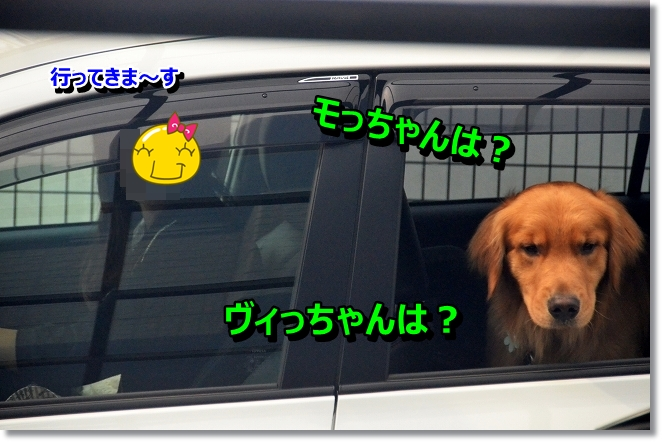 DSC_4300.jpg